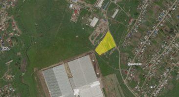 Земельный участок 1,6 Га Толмачево Новосибирский район