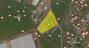 Земельный участок 1,62 Га Толмачево Новосибирский район