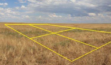 Изъятие неиспользуемых сельхозземель в Новосибирской области планируют упростить