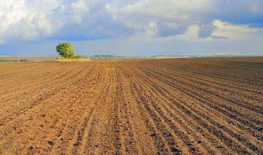 На более чем 5,5 тыс. участков земельный налог будет рассчитан по повышенной ставке
