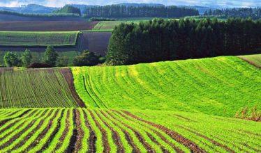 Зоны сельскохозяйственного использования — код зоны СХ