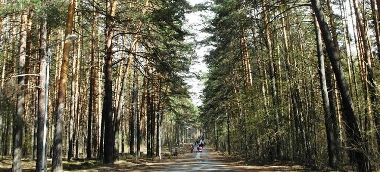 Предотвращен самовольный захват земель в Новосибирске