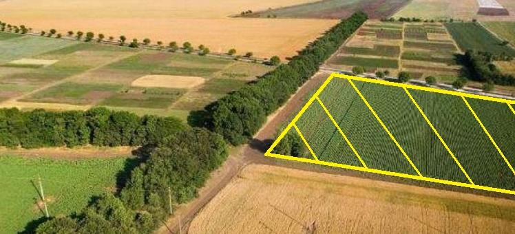 Как перевести участок из земель сельскохозяйственного назначения в другую категорию земель