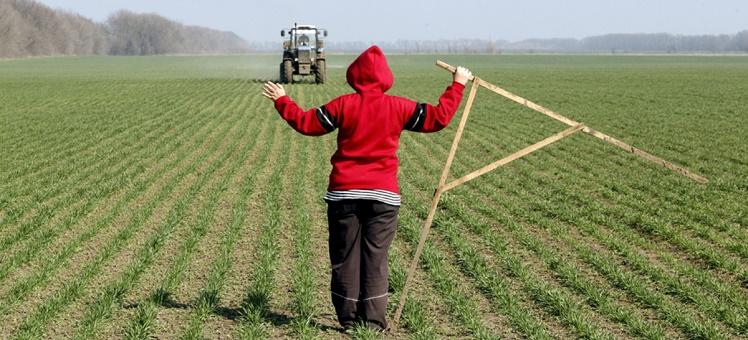 О залоге земель сельхозназначения - законопроект принят в первом чтении