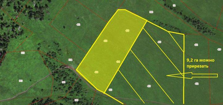 Земельный участок 4,6 Га (возможно увеличение до 9,2 Га) под жилищное строительствос. Верх-АносРеспублика Алтай, Чемальский район