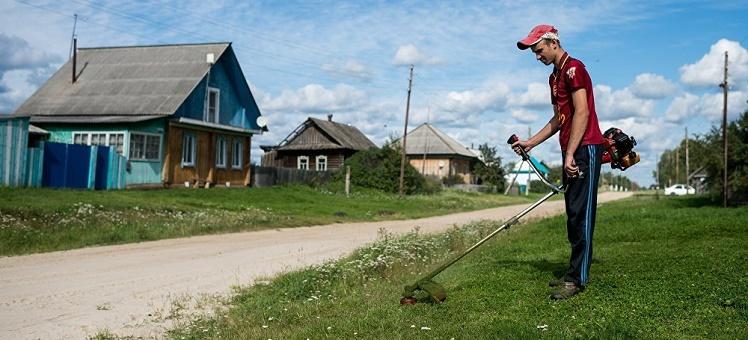Минэкономразвития предложило механизм изъятия участков за нарушение правил пожарной безопасности нескошенную траву и мусор