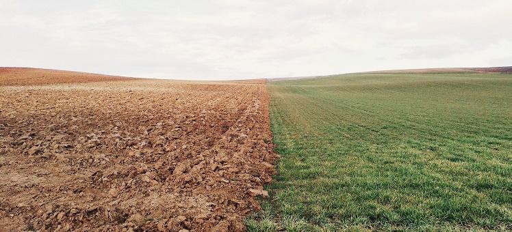 Передача Росреестру полномочий по регулированию земельных отношений