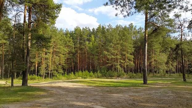 Земельный участок 4,40 Га Кудряшовский сельсовет Новосибирский район