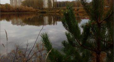 Земельный участок 2,09 Га ул. Луговой проезд Каинская Заимка Барышевский сельсовет Новосибирский район