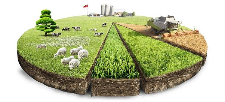 эффективность использования городского имущества и участвовать в решении вопросов по земельным участкам